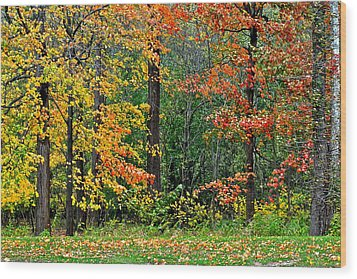 Autumn Landscape Wood Print by Frozen in Time Fine Art Photography