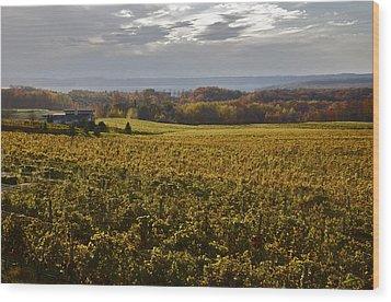 Autumn On Old Mission Peninsula  Wood Print