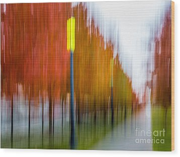 Autumn Park 1 Wood Print by Susan Cole Kelly Impressions