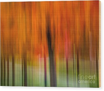 Autumn Park 2 Wood Print by Susan Cole Kelly Impressions