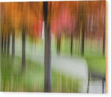 Autumn Park 3 Wood Print by Susan Cole Kelly Impressions