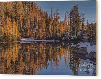 Autumn Reflected Wood Print by Mike Reid