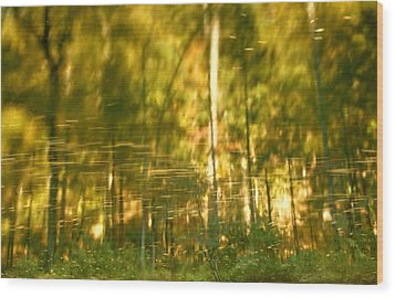 Autumn Reflections In Tennessee Wood Print by Dan Sproul