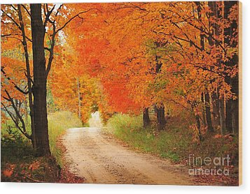 Wood Print featuring the photograph Autumn Trail by Terri Gostola