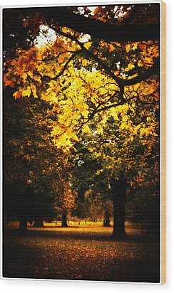 Autumnal Walks Wood Print by Lenny Carter