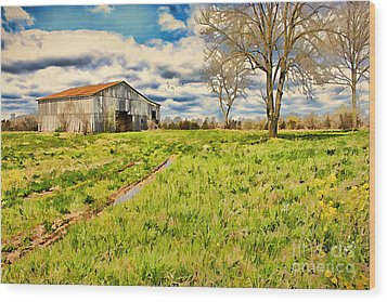 Back Roads Of Kentucky Wood Print by Darren Fisher