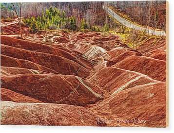 Wood Print featuring the photograph Badlands by Michaela Preston