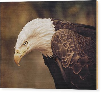 Bald Eagle Wood Print by Marion McCristall