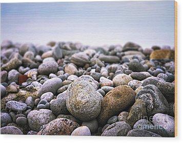 Beach Pebbles Wood Print by Elena Elisseeva