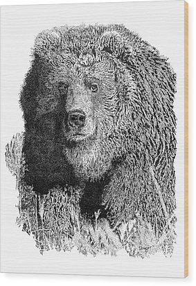 Bear 1 Wood Print