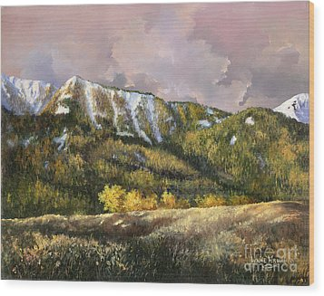 Wood Print featuring the painting Bear Claw by Lynne Wright