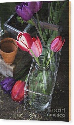 Beautiful Spring Tulips Wood Print by Edward Fielding