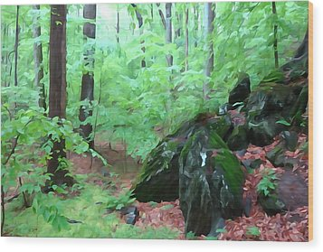 Wood Print featuring the photograph Beside The Trolley Trail by Dana Sohr