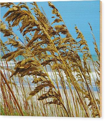 Beyond The Sea Oats Lies Eternity Wood Print by Lorraine Heath