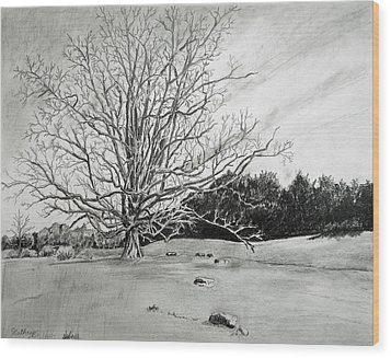 Big Tree Wood Print by Christine Lathrop