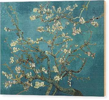 Blossoming Almond Tree Wood Print