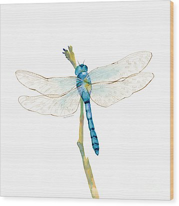 Blue Dragonfly Wood Print by Amy Kirkpatrick