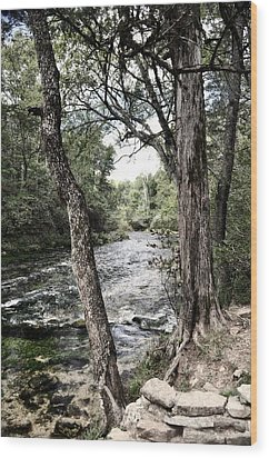 Blue Spring Branch Wood Print by Marty Koch