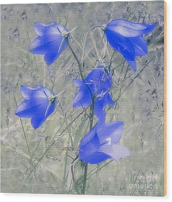 Bluebells Wood Print by Sylvia  Niklasson