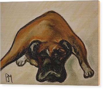 Boxer Down Wood Print by Pete Maier