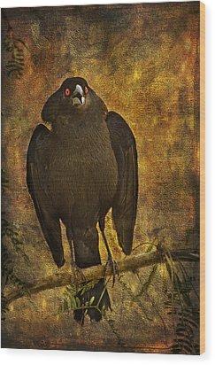 Bronzed Cowbird Wood Print by Barbara Manis