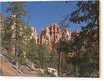 Bryce Canyon National Park Wood Print by Michael J Bauer