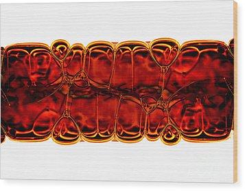 Bubbles Wood Print by Michal Boubin