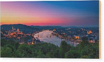 Budapest 03 Wood Print by Tom Uhlenberg