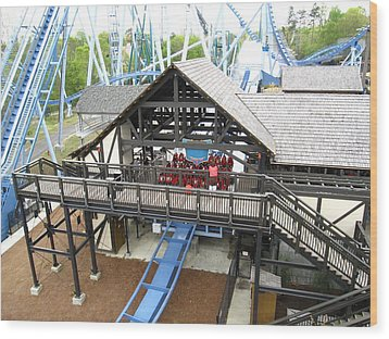 Busch Gardens - 12125 Wood Print by DC Photographer