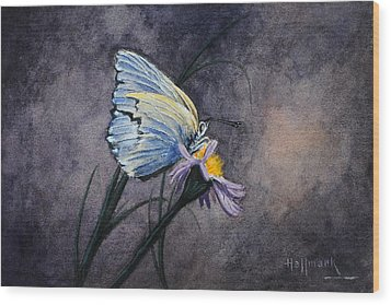 Butterfly Wood Print by Bob Hallmark
