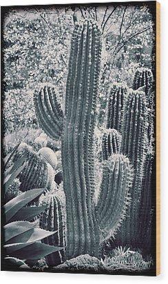 Cactus Land Wood Print by Kelley King