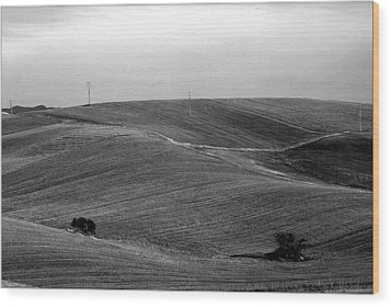 Trees Countryside Hills Wood Print