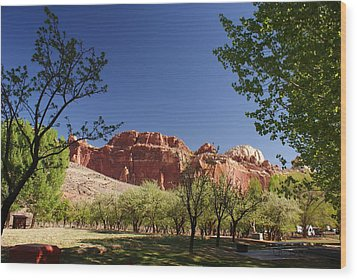 Capitol Reef Evening Wood Print by Michael J Bauer