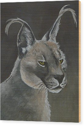 Caracal Cat Wood Print by Margaret Saheed