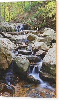 Cascade Falls Wood Print