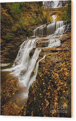 Cascadilla Gorge Wood Print