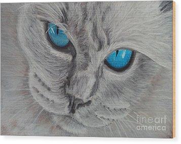 Cat's Eyes Wood Print