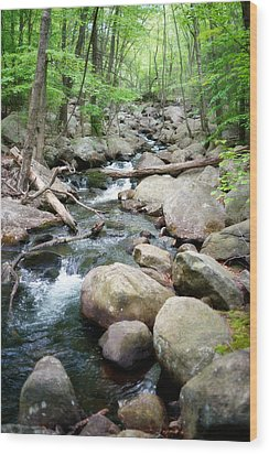 Catskills Waterfall Wood Print