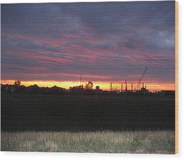 Cedar Point - 121212 Wood Print by DC Photographer
