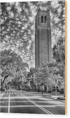 Century Tower  Wood Print by Howard Salmon