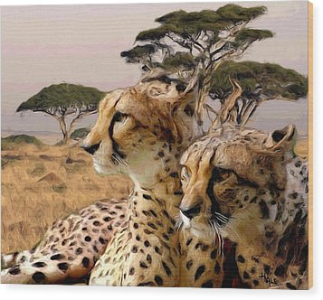 Cheetah Brothers Wood Print by Roger D Hale