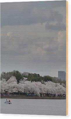 Cherry Blossoms - Washington Dc - 011311 Wood Print by DC Photographer