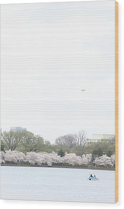 Cherry Blossoms - Washington Dc - 011320 Wood Print by DC Photographer