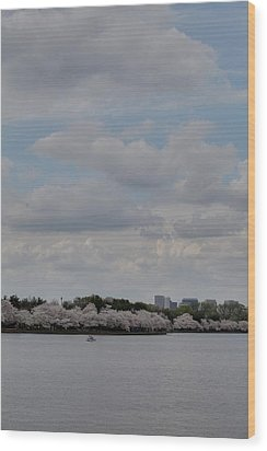 Cherry Blossoms - Washington Dc - 011324 Wood Print by DC Photographer