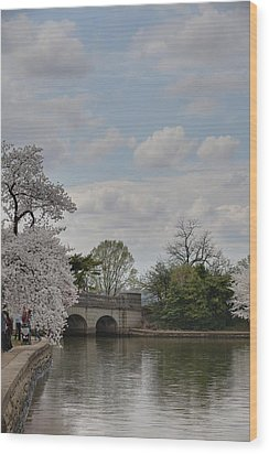 Cherry Blossoms - Washington Dc - 011330 Wood Print by DC Photographer