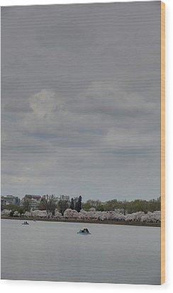 Cherry Blossoms - Washington Dc - 01134 Wood Print by DC Photographer