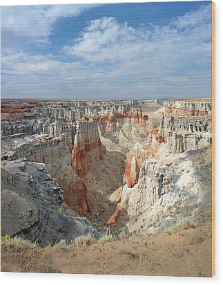 Coal Mine Mesa 14 Wood Print by Jeff Brunton