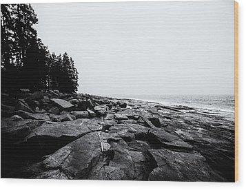 Coastal Scene 12 Wood Print