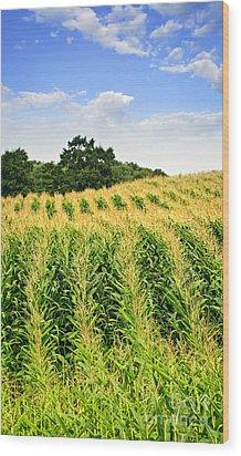 Corn Field Wood Print by Elena Elisseeva