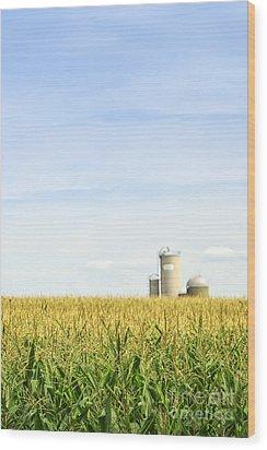 Corn Field With Silos Wood Print by Elena Elisseeva